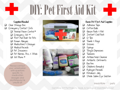 image of First Aid Kit list for Dogs