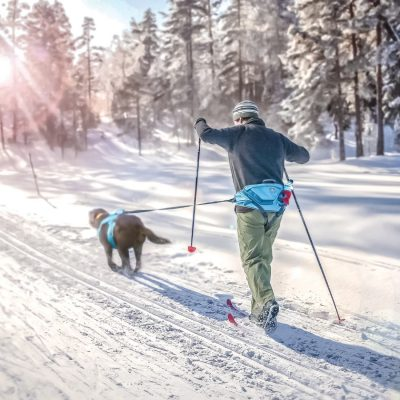 Dog and person skijoring with Kurgo joring set