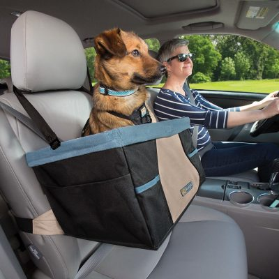Brown mixed breed dog sitting in Kurgo car booster seat