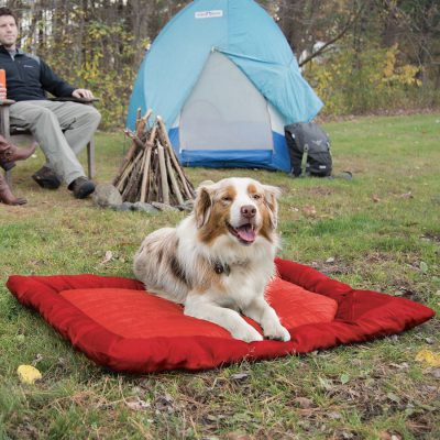 Red Kurgo waterproof travel dog bed