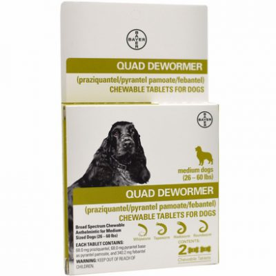 Quad Dewormer chewable tabs for dogs by Bayer