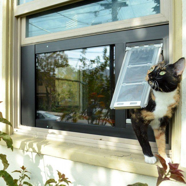 Endura cat flap insert for a sash window
